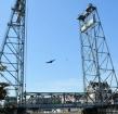 Belangstelling uit China voor Boskoopse brug