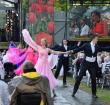 Alphense dansparen schitteren in jarige Keukenhof
